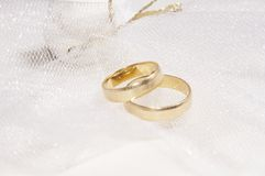 Anelli di cerimonia nuziale, giorno delle nozze Immagini Stock