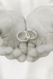 Anelli di cerimonia nuziale in mani Fotografie Stock