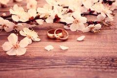 Anelli di cerimonia nuziale Mazzo nuziale dei fiori bianchi Fotografia Stock