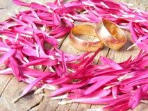 Anelli di cerimonia nuziale nei fogli dei fiori Immagini Stock Libere da Diritti