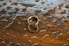 Anelli di cerimonia nuziale su legno bagnato Fotografia Stock Libera da Diritti