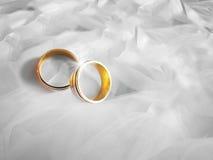 Anelli di cerimonia nuziale su priorità bassa bianca Fotografie Stock