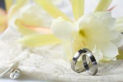 Anelli di cerimonia nuziale su priorità bassa chiara Immagini Stock Libere da Diritti