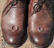 Anelli di cerimonia nuziale su un accoppiamento dei pattini di cuoio del Brown. Fotografia Stock