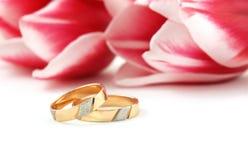 Anelli di cerimonia nuziale su una priorità bassa Immagini Stock