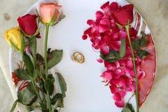 Anelli di cerimonia nuziale sui fiori Immagini Stock