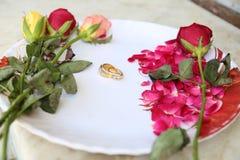 Anelli di cerimonia nuziale sui fiori Fotografie Stock Libere da Diritti