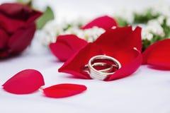 Anelli di cerimonia nuziale sui petali di rosa immagini stock