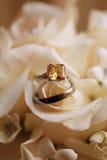 Anelli di cerimonia nuziale sul mazzo - rose bianche immagine stock