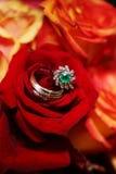 Anelli di cerimonia nuziale sul mazzo - rose rosse Fotografia Stock Libera da Diritti