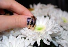 Anelli di cerimonia nuziale sul petalo dei fiori immagine stock