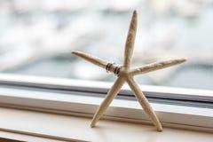 Anelli di cerimonia nuziale sulle stelle marine Fotografia Stock Libera da Diritti