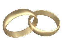 Anelli di fidanzamento Immagine Stock Libera da Diritti