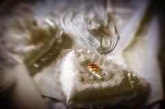 Anelli dorati - particolari di cerimonia nuziale Fotografia Stock