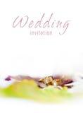 Anelli dorati su un invito di nozze Immagine Stock Libera da Diritti