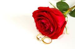 Anelli e rose Fotografia Stock