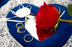 Anelli e rose di cerimonia nuziale Fotografie Stock Libere da Diritti