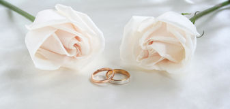 Anelli e rose di cerimonia nuziale come priorità bassa Immagini Stock Libere da Diritti
