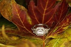 anello Fotografie Stock Libere da Diritti