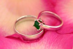 Anello ambrato Fotografia Stock