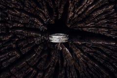 Anello d'argento martellato nell'albero Immagine Stock Libera da Diritti