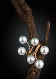 Anello dei gioielli con la perla sul ramoscello, fondo nero Fotografia Stock Libera da Diritti