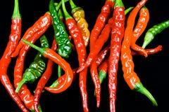 Anello dei peperoncini rossi del fuoco Immagini Stock Libere da Diritti