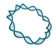 Anello del DNA illustrazione di stock