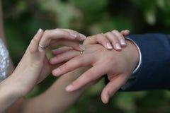 Anello dello sposo Fotografia Stock Libera da Diritti