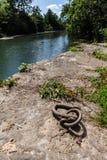 Anello di attracco della barca di fiume fotografia stock libera da diritti