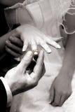 Anello di cerimonia nuziale Fotografia Stock