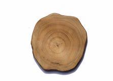 Anello di crescita sul ceppo di albero immagini stock libere da diritti
