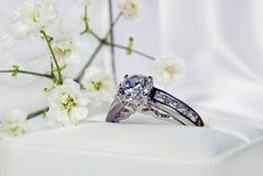 Anello di diamante del platino Immagini Stock