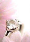 Anello di diamante di cerimonia nuziale Immagini Stock Libere da Diritti