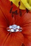 Anello di diamante in fiore   fotografia stock