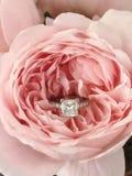Anello di diamante nella rosa di rosa Immagini Stock