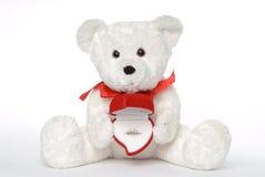Anello di fidanzamento della holding dell'orso Immagine Stock