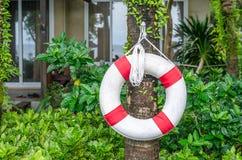 Anello di nuotata & x28; buoy& x29 di vita; per la salvavita sulla piscina laterale Immagini Stock Libere da Diritti