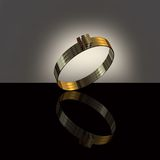 Anello di oro bianco 3D Immagini Stock