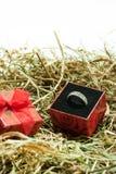 Anello di proposta con il contenitore di regalo nel nido di pasqua Fotografia Stock