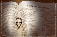 Anello e bibbia di cerimonia nuziale Immagine Stock