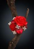 Anello rosso dei gioielli come fiore sul ramoscello, fondo scuro Immagine Stock Libera da Diritti