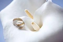 Anello sul fiore del Calla fotografia stock