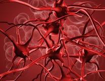 Anemia Stock Image