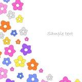 Anemon цветет безшовная предпосылка Стоковые Изображения RF