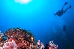 Ψάρια κλόουν στους βράχους anemone θάλασσας και δύτης σκαφάνδρων στοκ φωτογραφίες