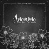 Anemone floral background on chalkboard. Chalk flower frame,  Floral invitation, flower card, flower anemone for mothers day, womens day, wedding, save the Royalty Free Stock Images