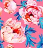 Anemone flower seamless pattern Stock Photos