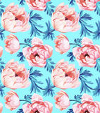 Anemone flower seamless pattern Royalty Free Stock Photography
