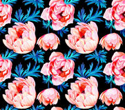 Anemone flower seamless pattern Stock Photography
